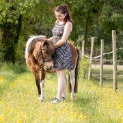 Photo de poney
