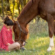 Séance cavalière cheval